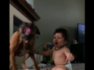 Watch This Adorable Baby And Her Dog Go Crazy Over Bubbles