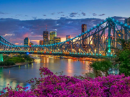 Top 5 Best Things to do in Brisbane