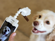 This Phone Attachment Holds A Treat For Better Pet Photos
