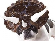 Halloween Triceratops Dog Costume