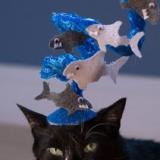 Sharknado Cat Hat