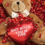 Shit Bitch Bear